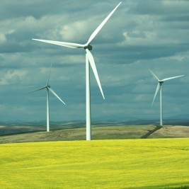 Wind Farms, Solar Energy